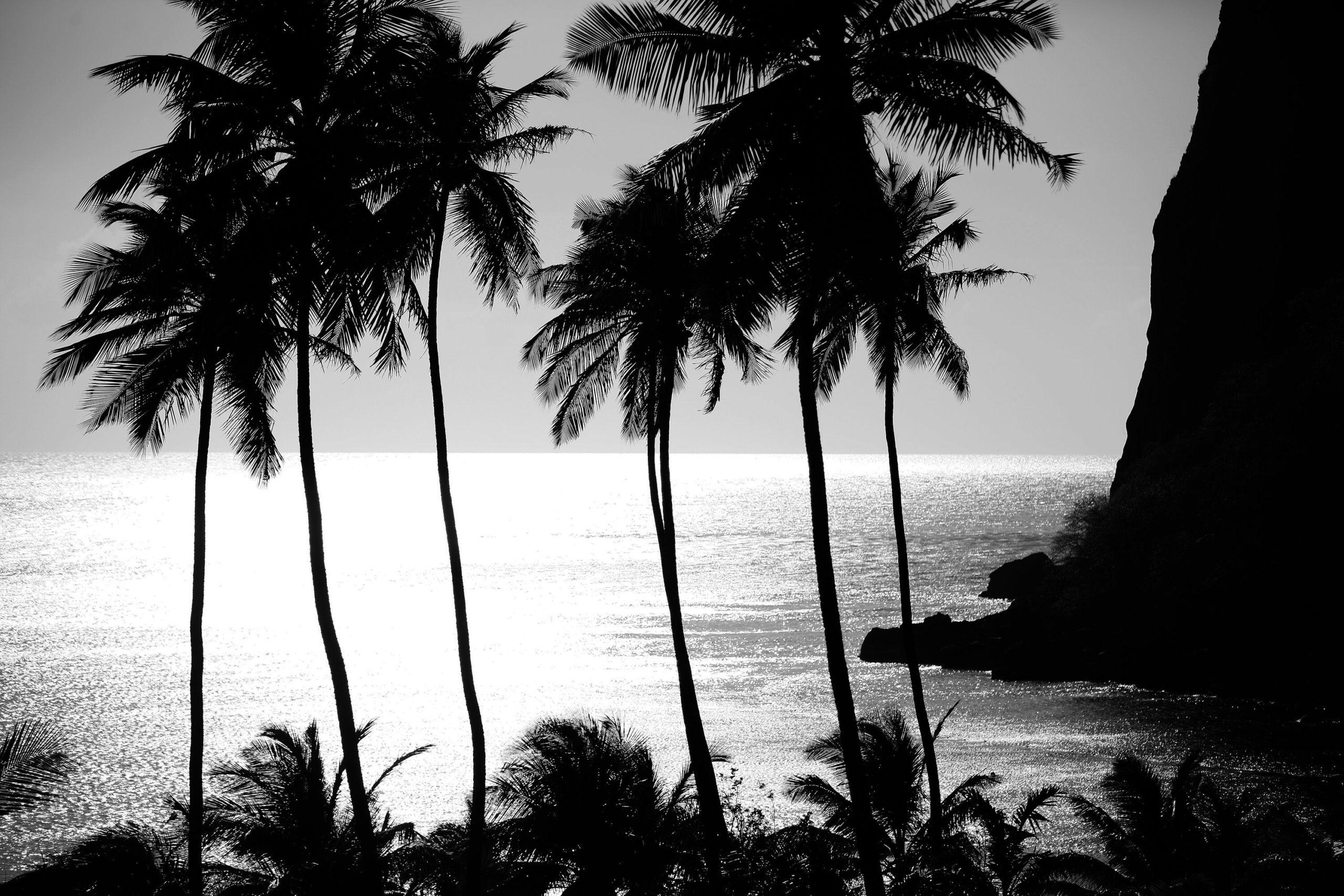 Sugar Beach, St Lucia