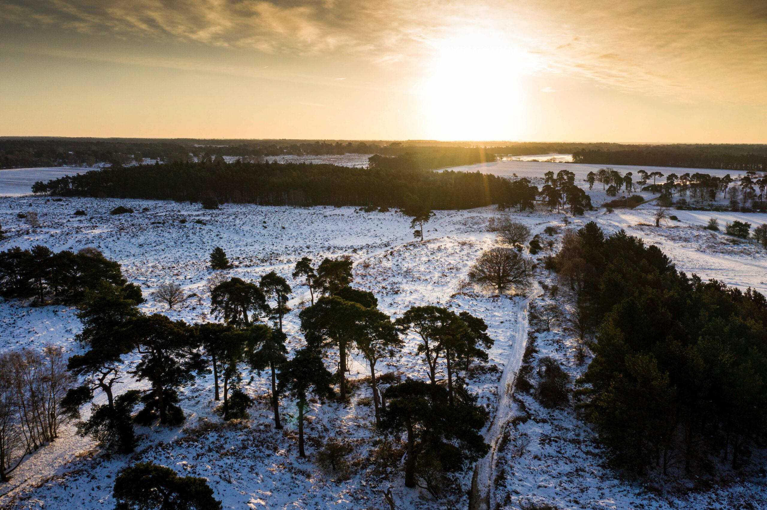 Sutton Heath sunrise