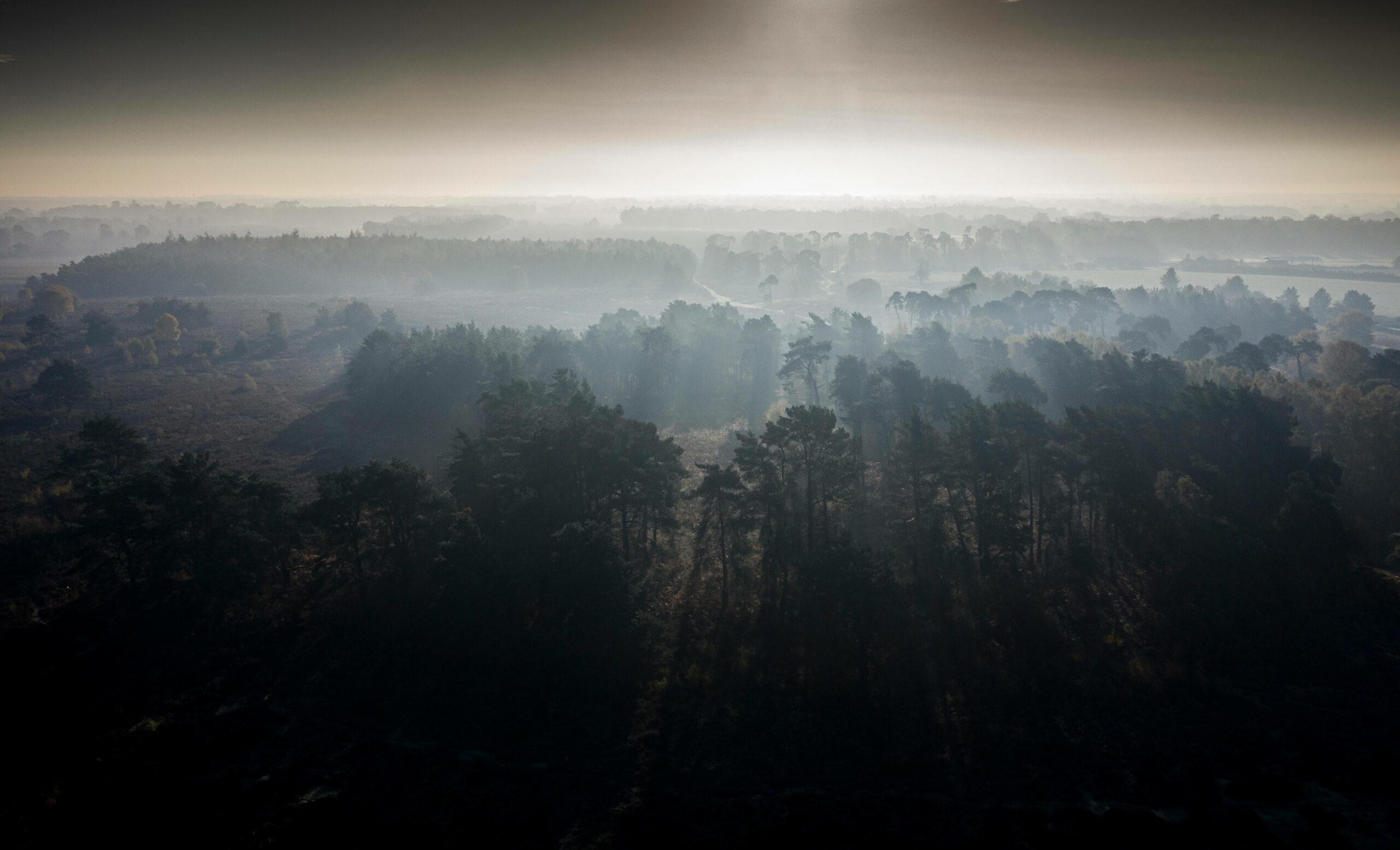 Sunrise over Sutton Heath